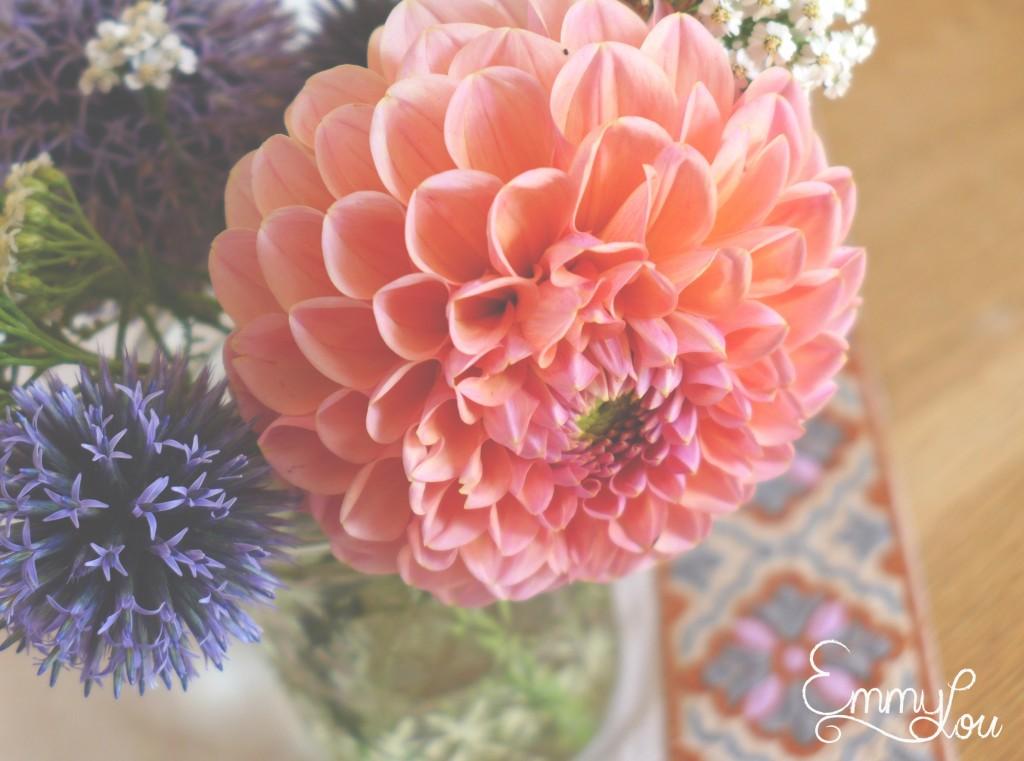 Juli flowers2