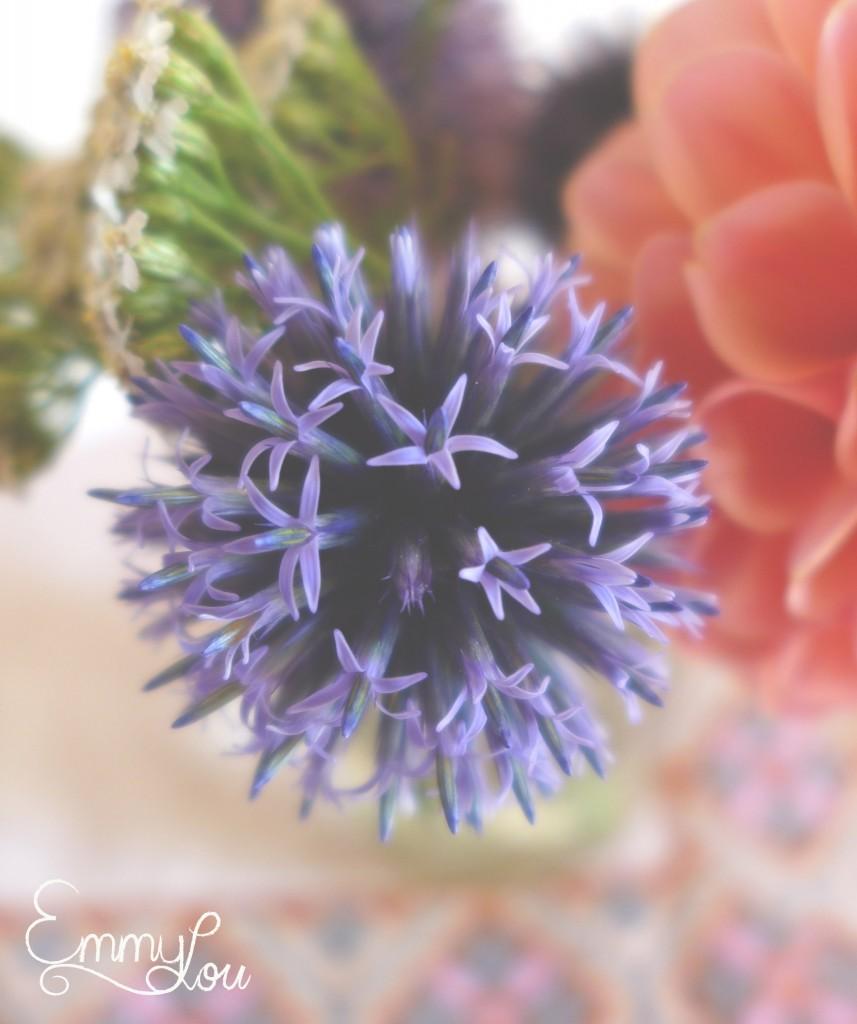 Juli flowers3